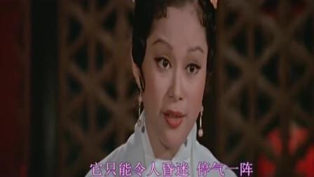 白玉老虎9:赵无忌被识破身份大战 唐家堡中剧毒.