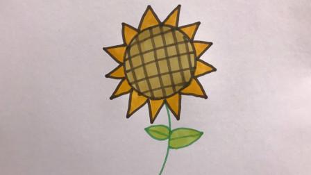 猪小妹学画画 向日葵趣味简笔画,永远向着阳光,绽放笑容