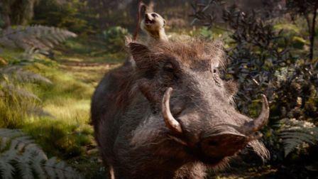 《狮子王》北美全新电视预告霸气来袭
