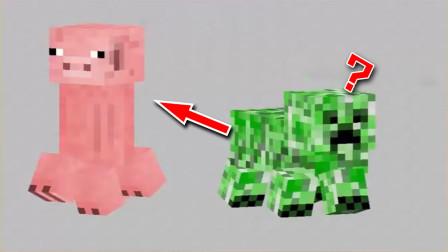 我的世界:這大概是你見過最奇葩的MC生物,苦力豬,豬力怕?