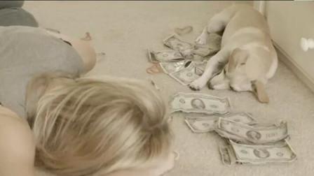 女孩买了一个热水瓶,回家却发现里面藏着一万美金,顿时欣喜若狂