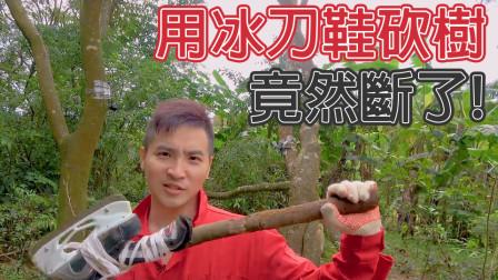 谷阿莫Life:什么电影害我在深山里砍树?