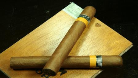 雪茄是怎么生产的呢,它和香烟的区别是什么?今天算长见识了