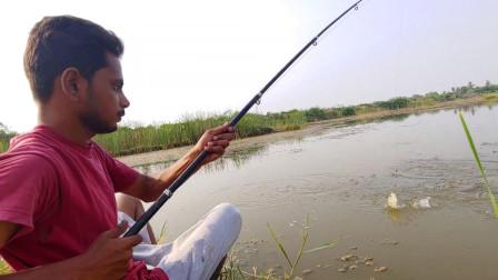 野外罗非鱼泛滥成群,农村小哥刚抛下鱼饵,鱼儿纷纷咬钩,爽呀!