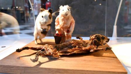 瑞典奇葩博物馆,门票是一个呕吐袋,里面的食物把游客都看吐了