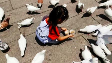 妙妙喂鸽子