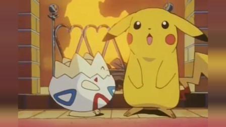 神奇宝贝:看到皮卡丘和小智睡在一起,菊草叶吃醋了