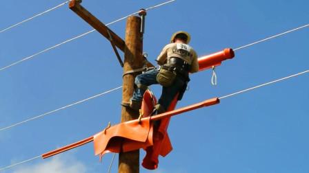 美国作为发达国家,为什么有些城乡用木头做电线杆?