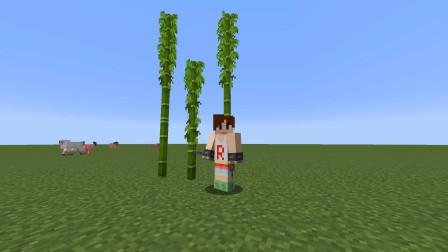 【明月庄主】我的世界红石研究日记:刷竹子