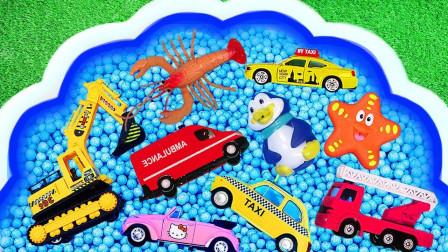 儿童汽车玩具动物玩具学习名称 校车警车飞机蜜峰狮子大龙虾 萌娃趣味学识