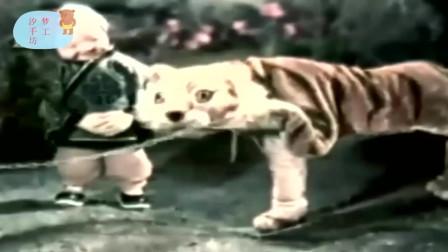 1959.一只鞋(木偶,tv采集)精彩片段(23)