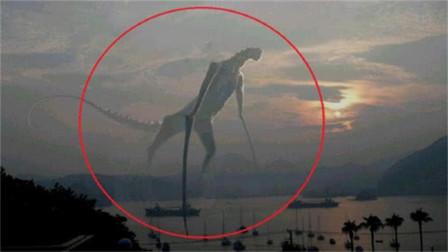 曾让恐龙也忌惮的3种灭绝动物!幸好寿命短,不然真没恐龙啥事
