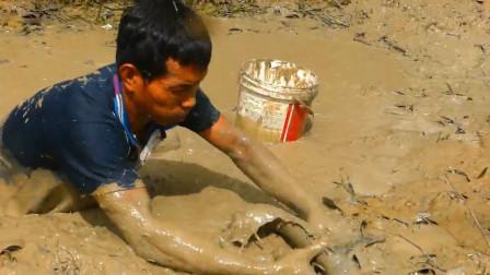 快干涸的水塘有鱼,农村小伙舀干水就开抓,看看他抓了多少?