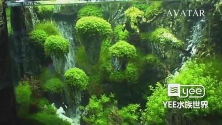 悬浮山+流沙瀑布:鱼缸里的阿凡达主题造景