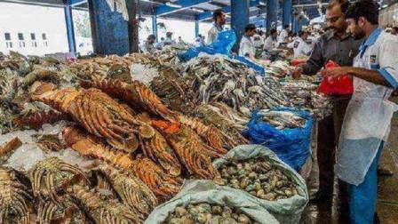 迪拜的菜市场都卖点什么?堪称最豪如同寻宝,网友:想去捡垃圾