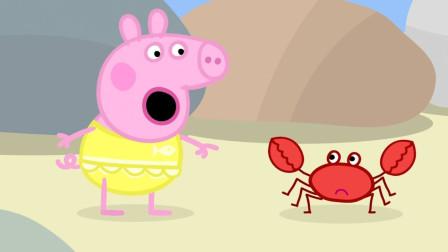 小猪佩奇在海边泥滩上发现一只大螃蟹 简笔画