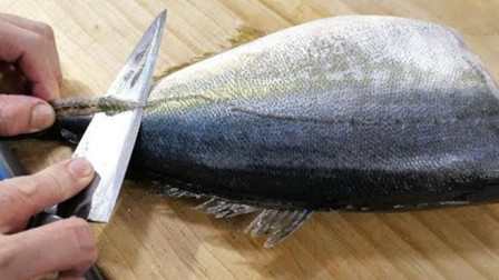 日本顶级的竹荚鱼,堪比金枪鱼肉珍贵,切开后才是精华,生吃