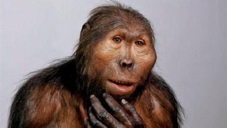 """地球上原本没有人类,第一个""""人""""是怎么来的?今天可算知道了"""