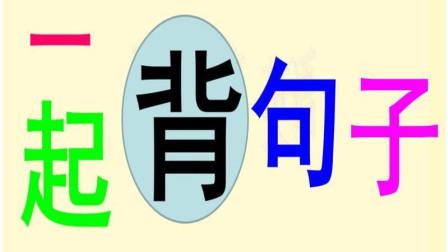 一起背句子44  零基础学英语  阿明珍藏英语