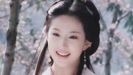 当赵丽颖换上王语嫣造型后,网友:和刘亦菲一模一样