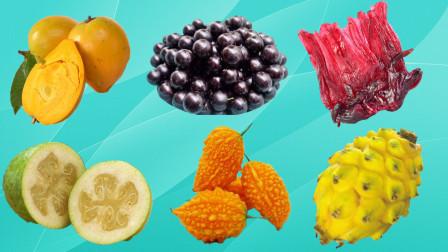 认识洛神果等世界最罕见水果,乐宝识果蔬