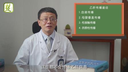 楚天名医大讲堂:一个关于乙肝病毒携带者的故事