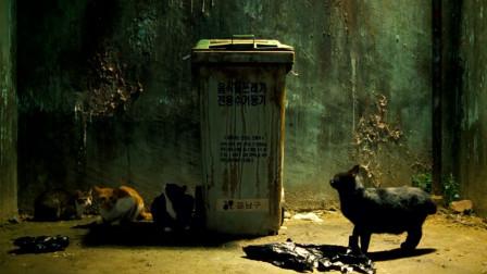 小伙没有分类垃圾就丢弃,混合后变成病毒的培养基!传遍世界各地