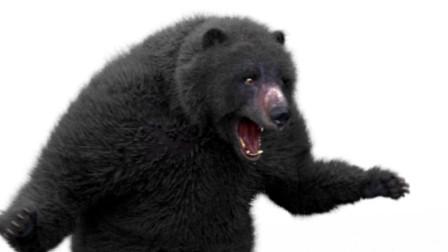 """梁火龙""""狂龙""""要大战的大黑熊,VFX电影特效"""