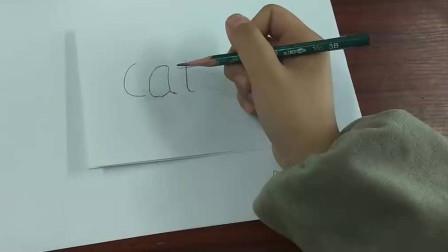画画的同时还能学英语,可爱小猫咪的简笔画,快试试学会了吗