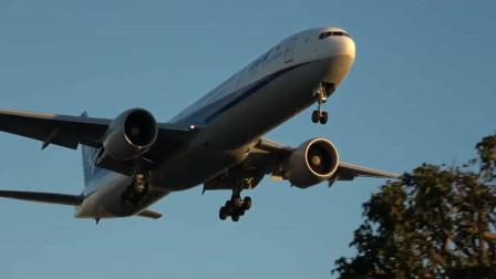 全日空波音777客机降落洛杉矶机场,摄影爱好者拍摄