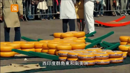 """欧洲始发点荷兰,被称""""郁金香的故乡"""",最著名的还是奶酪"""
