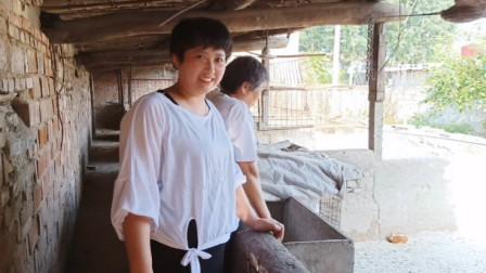 农村65岁大妈致富项目,说的头头是道,信心满满,赚大钱