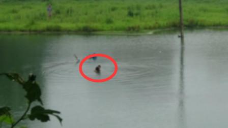 女子抱儿子跳湖轻生 孩子湖水中不停呼喊救命