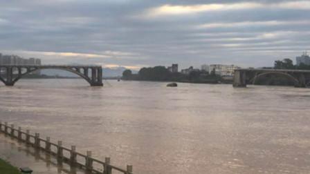 监拍广东一大桥凌晨突然坍塌 两车掉水中已救起1人