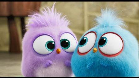 【猴姆独家】太可爱啦!#愤怒的小鸟2#首曝父亲节特别预告片