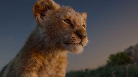 《狮子王》定档7.12!殿堂级视听超越经典,领先全球王者归来!