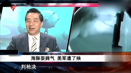 张召忠:两只海豚犯下的大错,被军事法庭执行枪决!