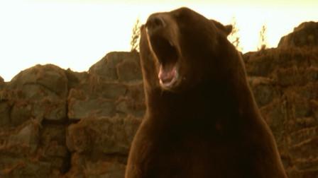 史前巨鳄:无论棕熊有多大,在史前巨鳄面前,那都是一口的事