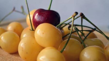 黄色樱桃和红色樱桃有什么区别,营养师道出猫腻,看完恍然大悟!