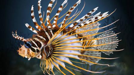美丽的狮子鱼 其实剧毒无比