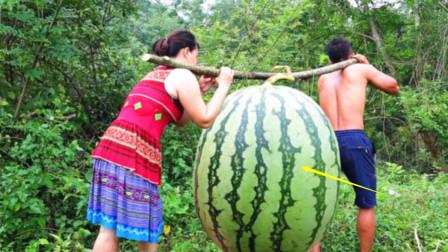 農村男童撿到巨大西瓜,偷偷帶回家切開,意想不到的事瞬間發生