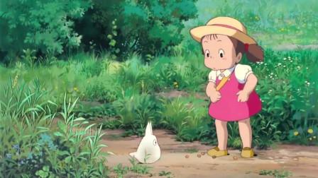 龙猫:憨憨的小龙猫,平静的从小梅面前路过,小梅的表情太可爱了