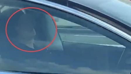 """司机高速上睡着半小时,汽车""""无人驾驶""""48公里,这技术太牛了!"""