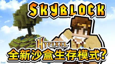 全新MC沙盒生存 籽岷的Hypixel SkyBlock体验
