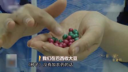 致富经:去巴西种植大豆的中国公司,顺便收购了巴西的农药生产商