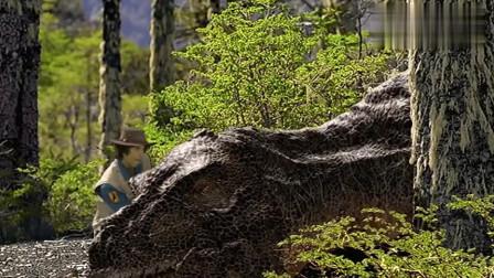 安迪的恐龙冒险:安迪趁暴龙休息,居然做这种事情,史前暴龙大怒