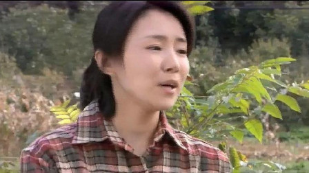 寡妇田边收玉米杆遇困难,不料老实小伙主动上来帮她,寡妇心动了