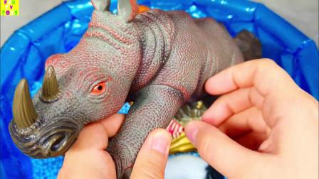 动物园动物野生动物园的动物为孩子们学习农场动物的名字和声音我们为孩子们的学习