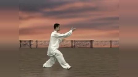世界冠軍陳思坦大師演練24式太極拳整套演練看了幾遍還是不夠