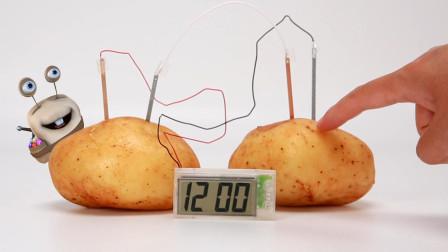 会发电的土豆 神奇科学实验游戏